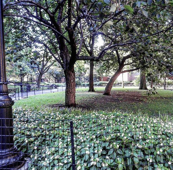 Parks on the Upper West Side