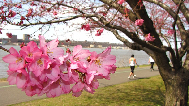 Photos of Riverside Park