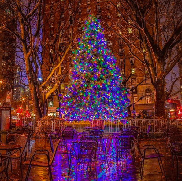 Winters Eve Lincoln Square Christmas Tree