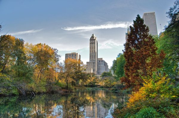 Central Park Fall Foliage Spots