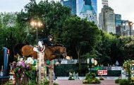Central Park Horse Show