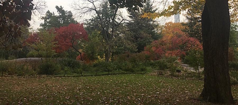 nature tours in central park