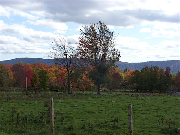 Best Fall Getaways From NYC