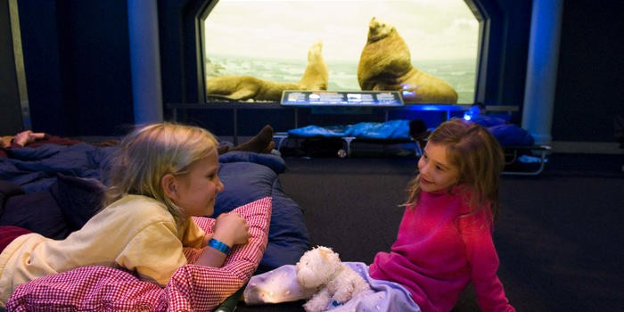 AMNH Presents The Power of POOP