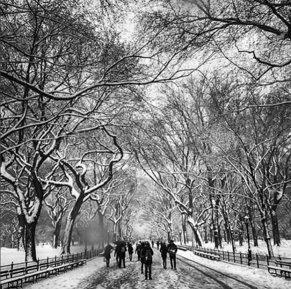 Photos of Winter Storm Toby in NYC