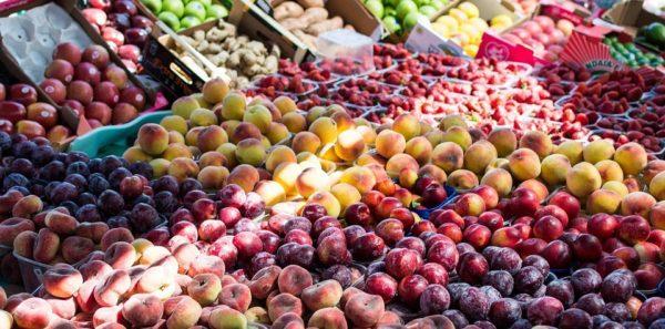 fresh food for seniors