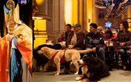 Blessing of the Animals at St. John the Divine