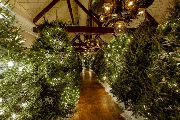 Tavern on the Green Christmas Tree Lighting