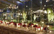 Tavern on the Green's Christmas Tree Lighting