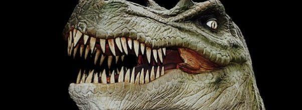T-Rex Exhibit AMNH
