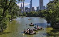 Central Park Movie Scenes Tour