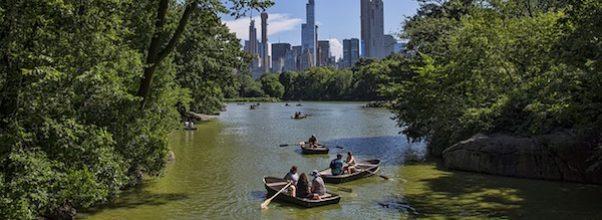 Trump Organization NYC Parks Department