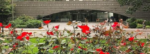 AMNH Furloughs Layoffs