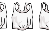 Plastic Bags Banned in NYC