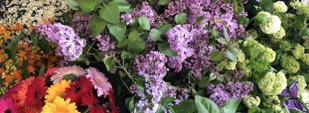 Arthouse Flower Market Returns
