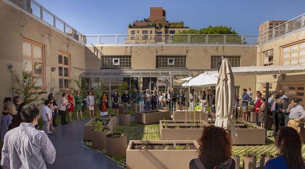 PS84 Roof Garden Opening