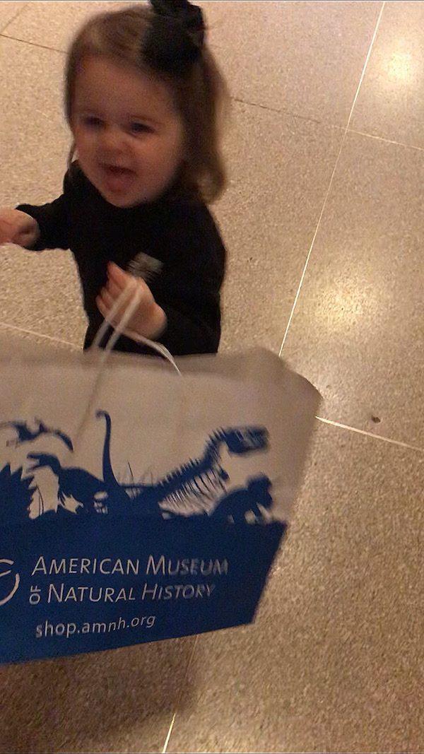 AMNH Dino Store