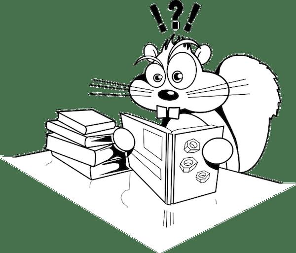Central Park Squirrel Census 2019