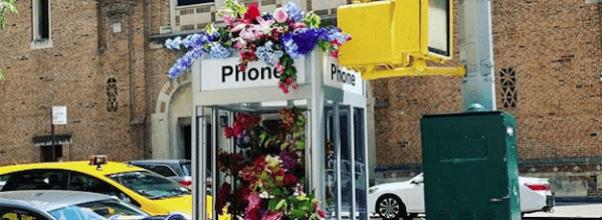 Flower Flash West End Avenue