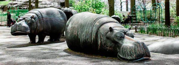 Hippo Playground Summer Events