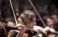 Philharmonic Free Fridays Returns