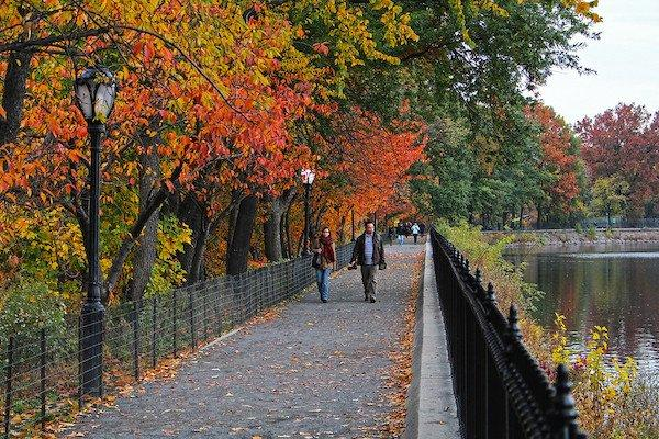 Central Park Reservoir Fall Foliage