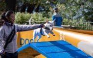 Riverside Park DOG Fest