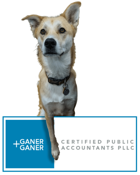Ganer + Ganer