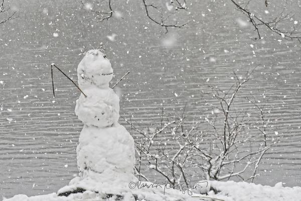 snow man in central park