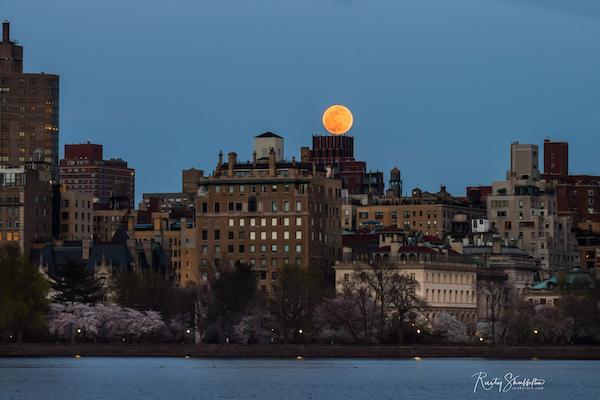 super pink moon central park