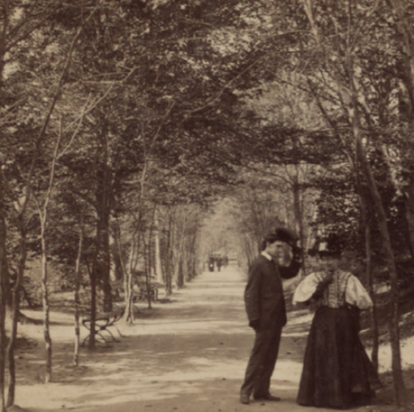 Lovers Lane Central Park