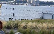 Breathing with Strangers Riverside Park