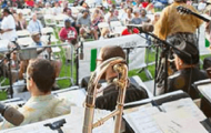 Great Jazz Streamed from Central Park