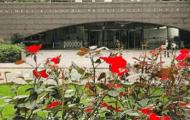Museum Reopenings