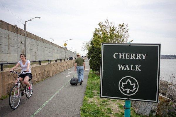 cherry walk riverside park