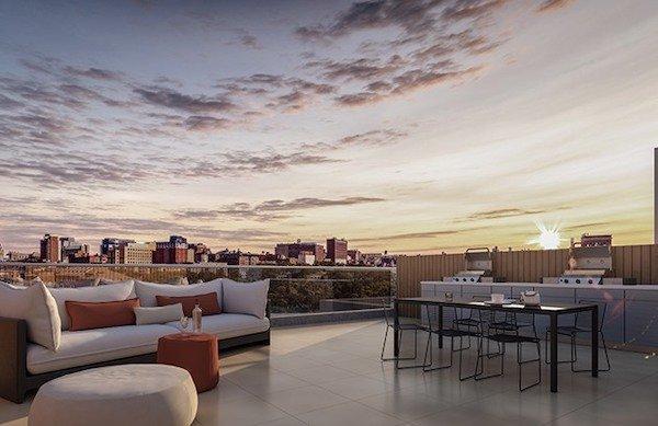 harlem condo roof deck