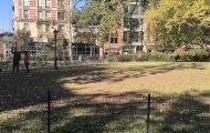 lawns closed near AMNH