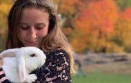 central park rabbit