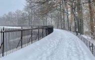 Winter Storm Orlena: Stunning, Snow-Filled Snapshots