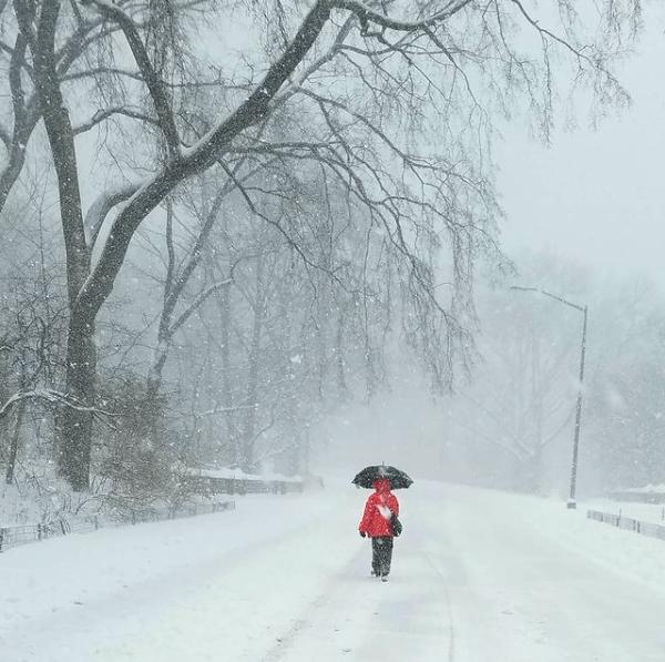 Winter Storm Orlena Central Park