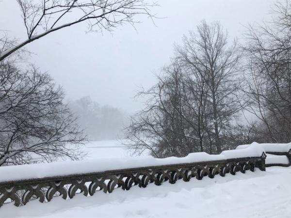 Winter Storm Orlena