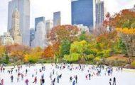 city seeks new wollman rink operators