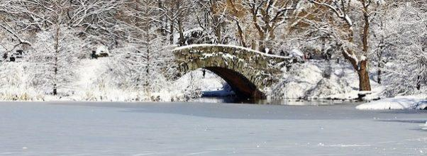frozen lake central park nyc