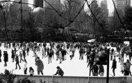 Ice Skater with Trump Flag Tackled at Wollman Rink