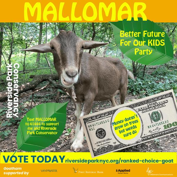 Mallomar campaign poster