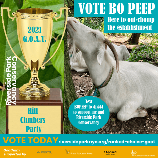 Ms. Bo Peep campaign poster