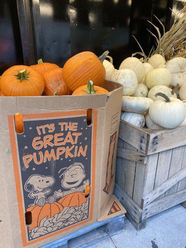 Fairway pumpkins