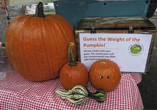 Freddie the Pumpkin