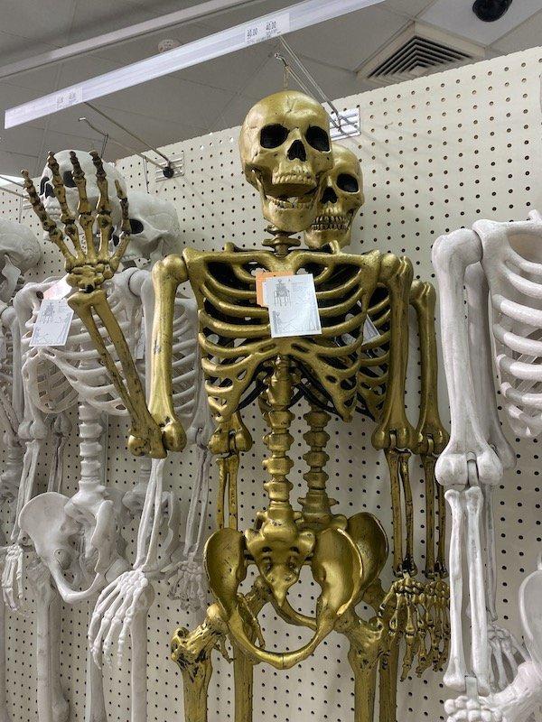 Target skeletons