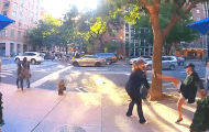 Woman with Kitten Missing, Believed to Be on UWS